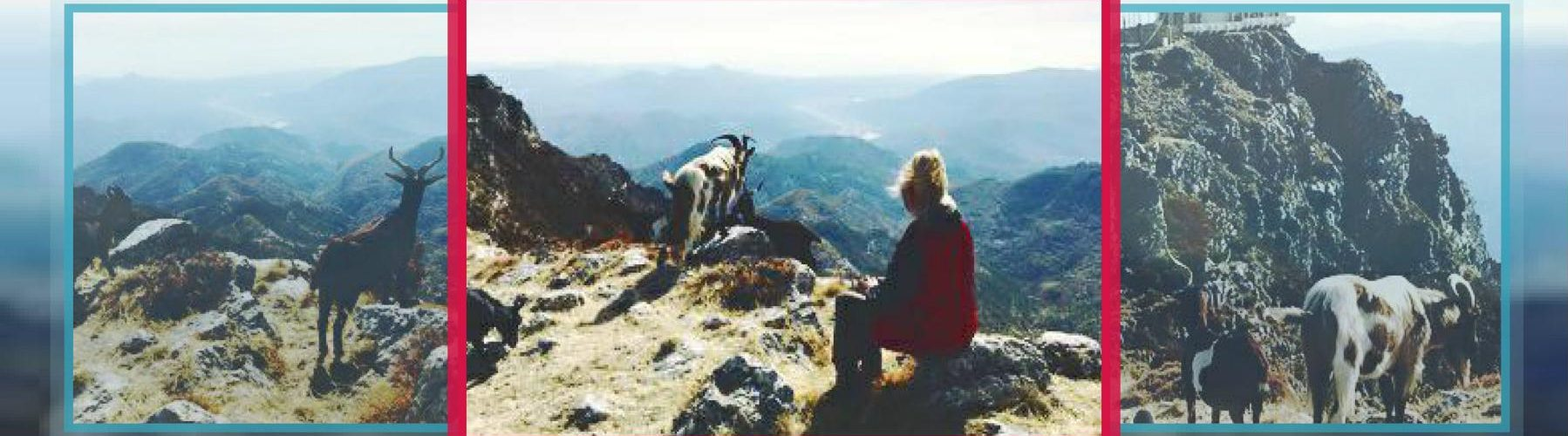 real riviera hiking judy churchill  The Esteron FRENCH ALPS